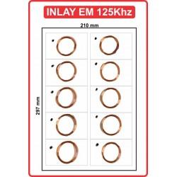 INLAY EM125khz